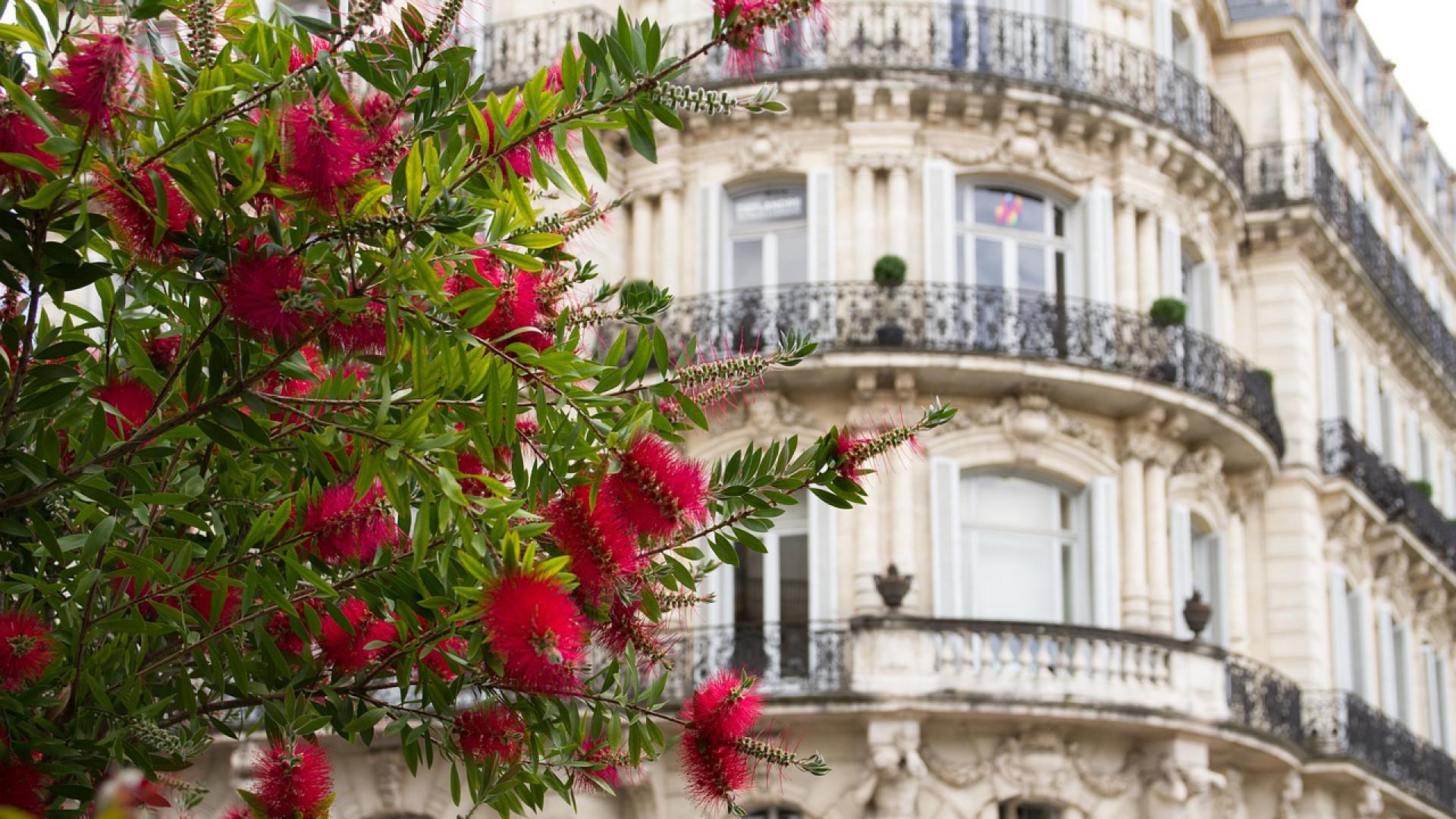 Pourquoi acheter dans le neuf à Montpellier