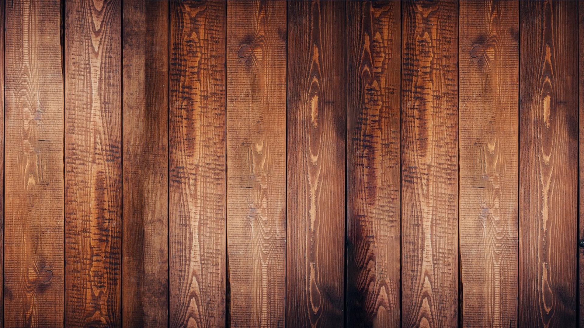 Les extensions en bois avec un toit plat
